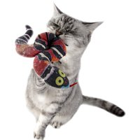 Cats And Catnip: What You Should Know