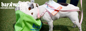 BarkWorld: the Not-to-Miss Conference for Pet People