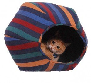 Furnishings and furniture: gifts for cat lovers