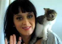 Katy Perry may have got the boot, but she can keep the cat