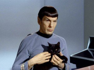 """Star Trek"" And ""Star Trek: The Next Generation"" Cat Names"