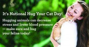 June 4 is National Hug Your Cat Day