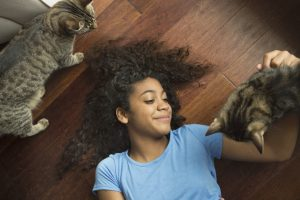 Keep Pet Cats From Destroying Your Apartment