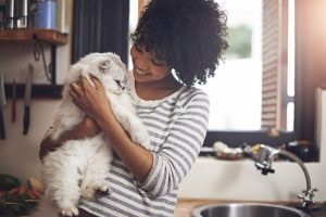 How To Choose A Cat Sitter