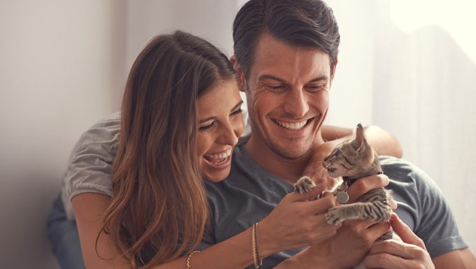 dating couple with kitten