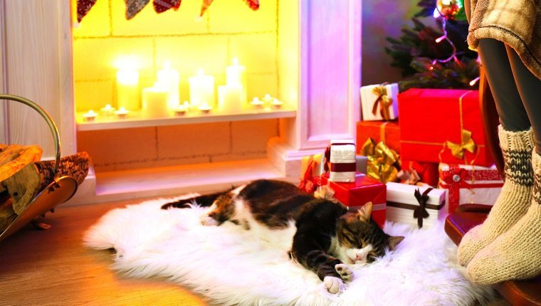 A cat sleeps on a white rug in front of a fireplace lit with candles and gifts under a Christmas tree.