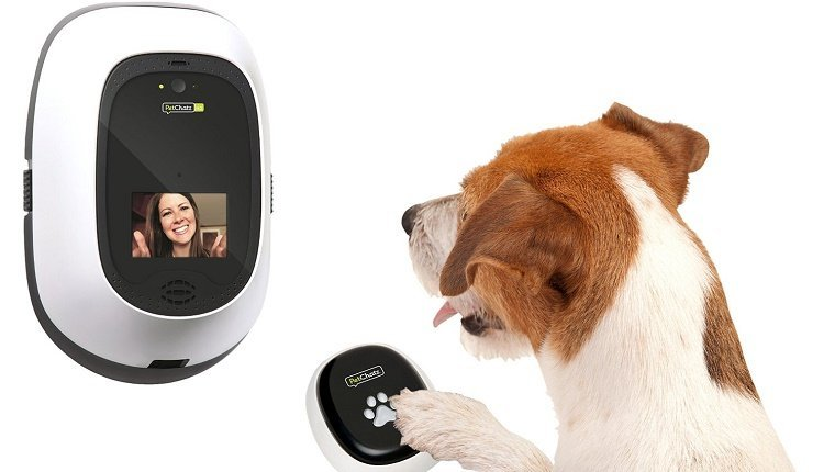 A dog presses a button on a remote for a wall-mounted video phone.