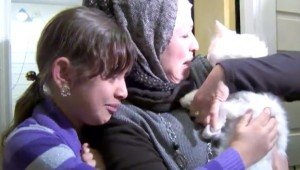 Global Search Effort Reunites Refugee Family With Their Lost Cat After Four Months