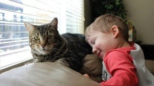 Hero Cat Who Saved Toddler From Dog Attack [VIDEO]