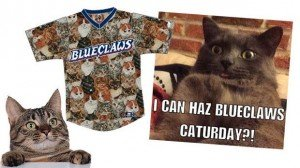 Blueclaws Baseball Team Welcomes Cats To Caturday Game