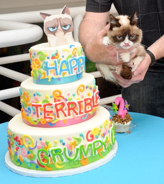 "NEW YORK, NY - APRIL 29: Grumpy Cat aka Tardar Sauce attends Grumpy Cat's ""Grumpiest"" Birthday Bash at 404 10th Avenue on April 29, 2014 in New York City. (Photo by Daniel Zuchnik/WireImage)"