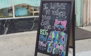 9 Reasons You'll Love The Kawaii Kitty Cafe
