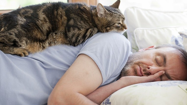 5 Ways To Show Your Cats Love That They Can Understand - CatTime
