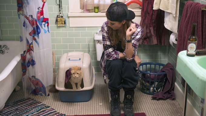 woman on toilet sits next to cat in litter box
