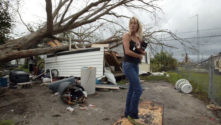 VERO BEACH, FL - SEPTEMBER 26: Levi Taylor rescues cats from the home of an elderly neighbor after a tree fell on the home due to high winds from Hurricane Jeanne September 26, 2004 in Vero Beach, Florida. Levi stated that she does not know where her elderly neighbor is and that she wanted to help by taking in her cats and dogs. (Photo by Joe Raedle/Getty Images)