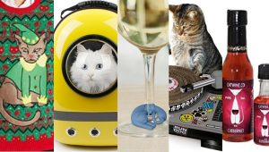 Best Holiday Gifts For Cats And Cat Lovers
