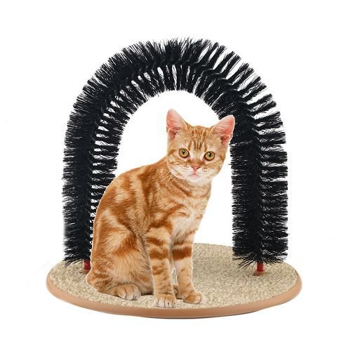 cat-grooming-toy