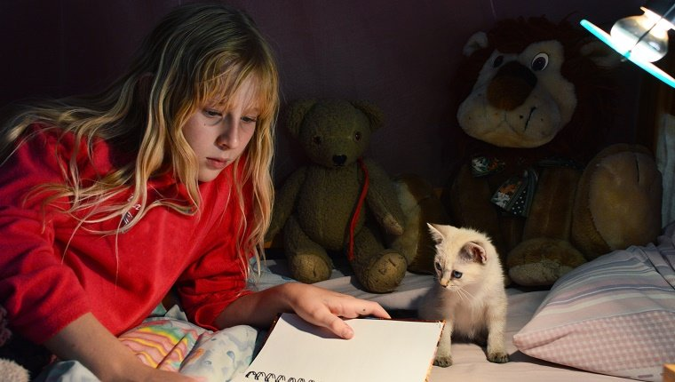 A blonde girl reading in bed at night under a nightlight, whilst a white kitten looks on.