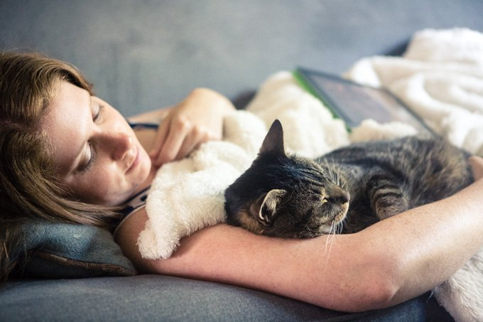 cuddle that kitty for national cuddle up day  january 6th