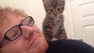 11 Pictures Of Celebrity Cat Dads For Father's Day [GALLERY]