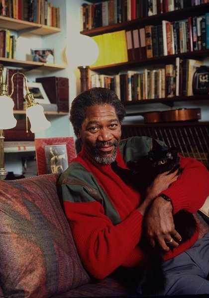 Actor Morgan Freeman posing w. pet cat at home in NYC. (Photo by Ted Thai/The LIFE Picture Collection/Getty Images)