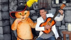 10 Most Famous Movie Cats Of All Time