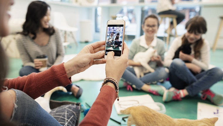 Mother with camera phone photographing daughter and friend holding kittens in cat cafe