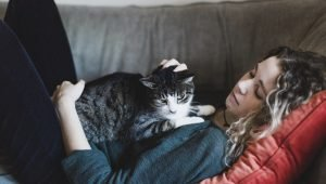 Professional Pet Sitters Week: 7 Ways To Say Thanks To Your Cat Sitter