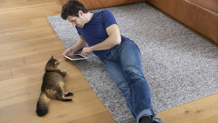 Man with digital tablet lying on floor, cat watching him