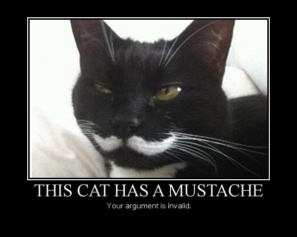 25 Demotivational Cat Signs To Demotivate You Cattime