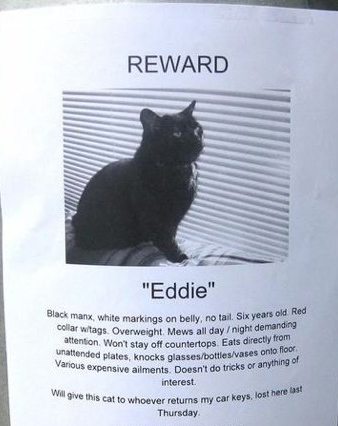 10 Funny Missing Pet Signs Cattime